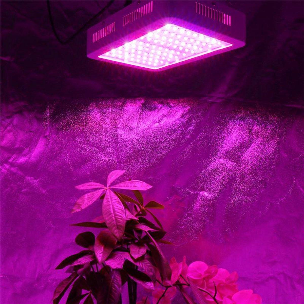 Hydrotec LED Kweeklamp 600 Watt in werking