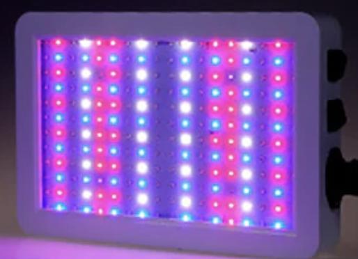 Grodt 2000 Watt LED Groeilamp en Bloeilamp Bloeistand