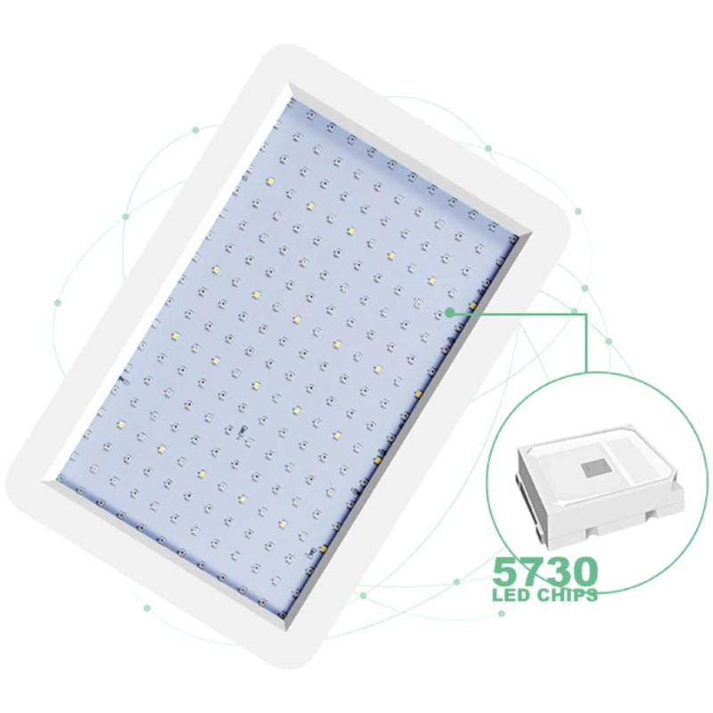 Grodt 100 Watt LED Groeilamp en Bloeilamp 5730 LED's