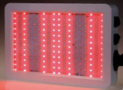 Grodt 100 Watt LED Groeilamp en Bloeilamp Groeistand